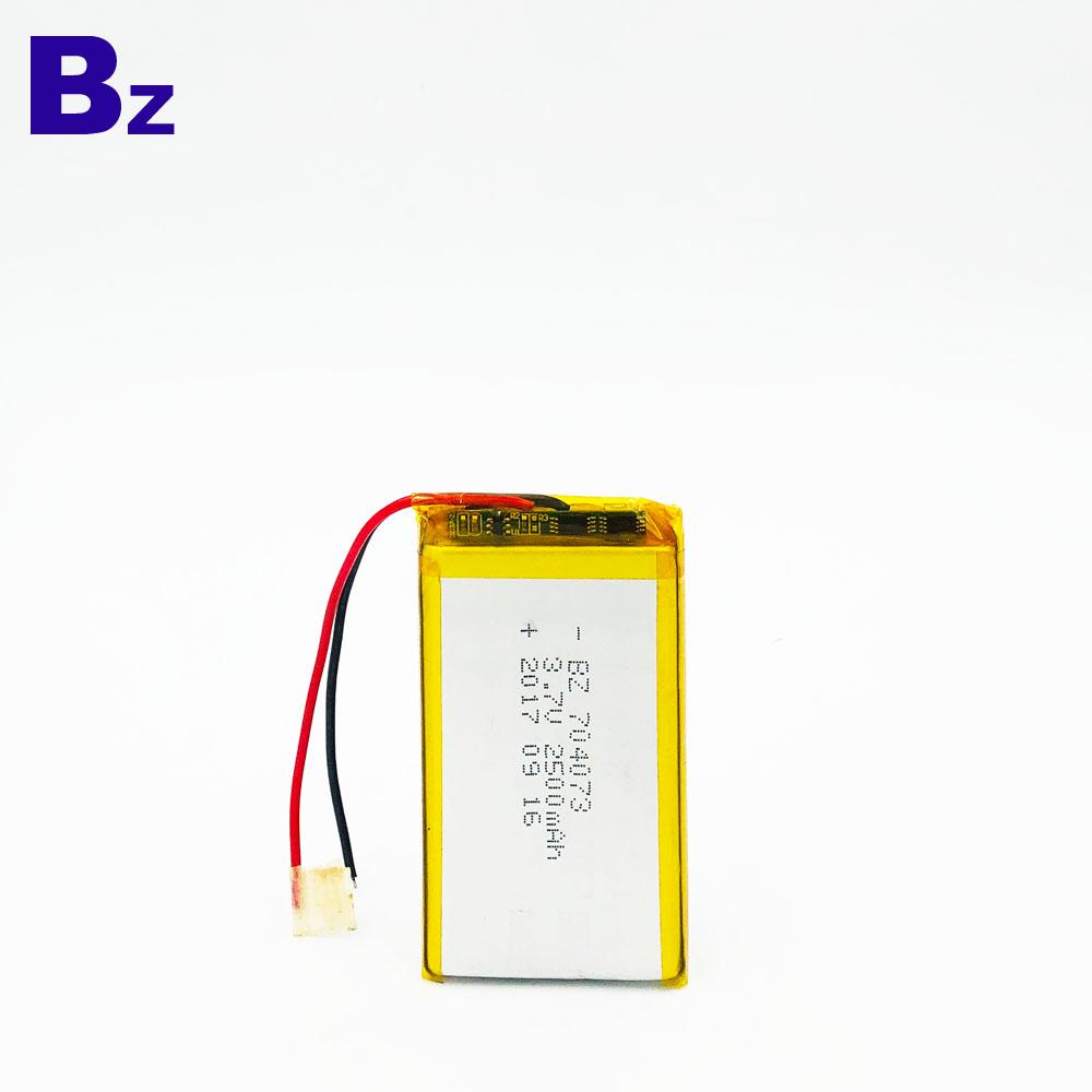 중국어 Lipo 배터리 공장